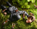 Ants ask mushrooming license of toy soldier Royalty Free Stock Image