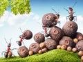 Mravce zberný semená v sklad tímová práca