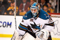 Antti Niemi San Jose Sharks Royalty Free Stock Photo