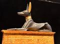 Anubis Royalty Free Stock Photo