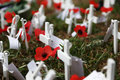 Anzac day poppies australia and new zealand s memorial service with crosses rosemary and messages from relatives Royalty Free Stock Photography