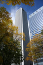 Aon Tower and autumn color Royalty Free Stock Photo