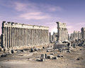 Apamea, Syria Royalty Free Stock Photo