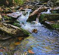 Appalachian creek a small flows through the forest in smoky mountains national park Stock Photos