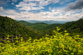 Appalachian Mountains Summer Asheville North Carolina Blue Ridge Royalty Free Stock Photo