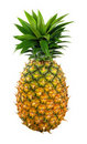 Appetite pineapple Royalty Free Stock Image