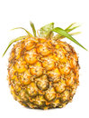 Appetite pineapple on white background Stock Images
