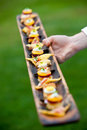 Appetizers served by a waiter Royalty Free Stock Photography