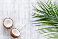 Appetizing coconut and palm branch on white background top view