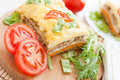 Appetizing and flavorful lasagna Royalty Free Stock Images