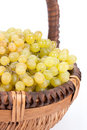 Appetizing grapes in a basket Stock Images