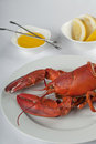 Appetizing lobster dish image of Royalty Free Stock Photos