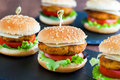 Appetizing mini chicken burgers. Royalty Free Stock Photo