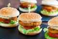 Appetizing mini chicken burgers. Royalty Free Stock Photo