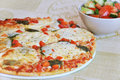 Appetizing pizza with mozzarellaand salad Royalty Free Stock Images