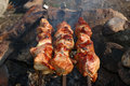 Appetizing roasted shish kebab (shashlik). Royalty Free Stock Photo