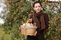 image photo : Apple basket