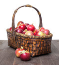 Apple basket a full of fresh picked apples Royalty Free Stock Images
