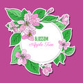 Apple blossom flower, bud, leaf, branch vector colorful doodle sketch hand drawn isolated on pink, round frame Royalty Free Stock Photo