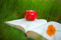 Apple on the book Royalty Free Stock Photo
