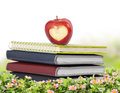Apple, books Stock Images