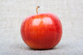 Apple on canvas Royalty Free Stock Photos