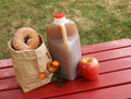 Apple cider and donuts Stock Images