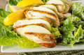 Apple cranberry chicken salad with parmesan dressing Stock Image