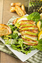 Apple cranberry chicken salad with parmesan dressing Royalty Free Stock Images