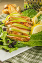 Apple cranberry chicken salad with parmesan dressing Stock Images
