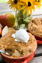 Apple crisp with ice cream at a picnic Stock Image