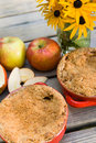 Apple crisp with ice cream at a picnic Royalty Free Stock Images