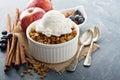 Apple crisp with vanilla ice cream Royalty Free Stock Photo
