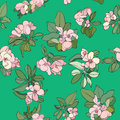 Apple flowers pattern tree cartoon spring hand drawn illustration over a green background Royalty Free Stock Photos