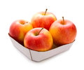 Apple four apples in box isolated over white background fresh fruit Royalty Free Stock Photo