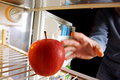 Apple on Fridge Royalty Free Stock Photo