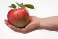 Apple in hand fresh red a female on a white background stock photo Royalty Free Stock Photo