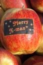Apple harvest betuwe with merry x mas sticker closeup of just harvested ripe apples in the village geldermalsen netherlands on Stock Photos