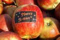 Apple harvest betuwe with merry x mas sticker closeup of just harvested ripe apples in the village geldermalsen netherlands on Royalty Free Stock Image