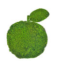 Apple with leaf from green moss isolated on white background Stock Photos