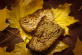 Apple maple cake two slices of an placed on some yellow leaves on a brown texturized piece of cloth honrizontal crop Royalty Free Stock Photography