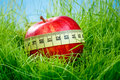 Apple and measuring tape red on the green grass Stock Photography