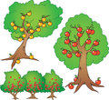 Apple orange tree and berry bush cartoon illustration set Stock Photos