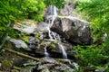 Apple Orchard Falls, Virginia, USA Royalty Free Stock Photo