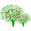 Apple orchard plant tree illustration Stock Photography