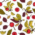 Apple repeating pattern