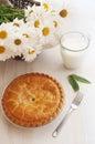 Apple pie and milk Stock Photography