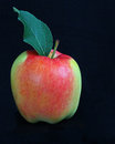 Apple red and green gala with black background Stock Photography