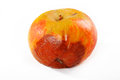 Apple rot on white background Stock Photo
