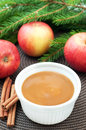 Apple sauce with cinnamon and fresh apples for christmas dessert top view vertical Stock Photography